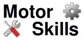 Motor Industry Skills